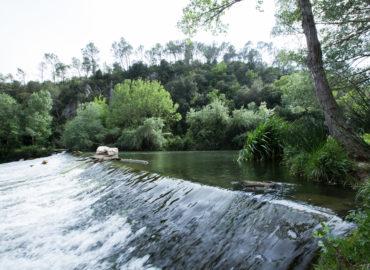 Villa Du Clos de Mingeaud villa-piscine-vacances-en-provence-15-370x270 Galerie photos