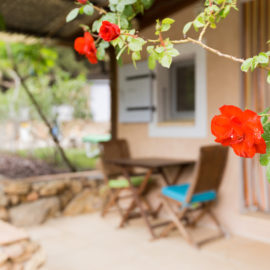 Villa Du Clos de Mingeaud IMG_7207-270x270 Accueil